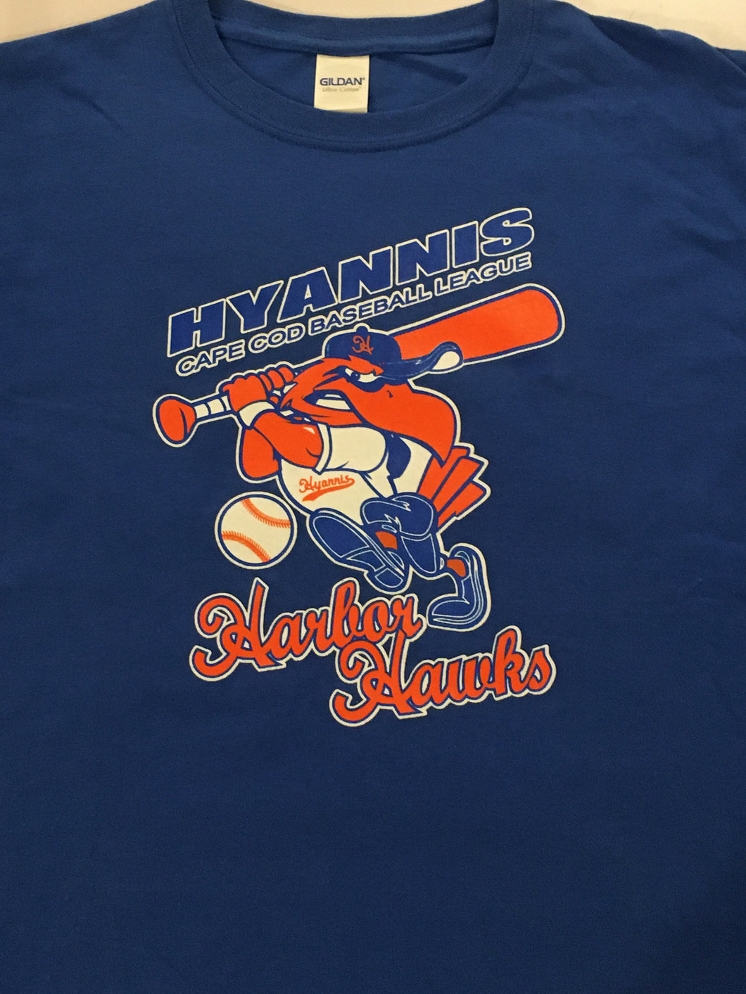 Hyannis Harbor Hawk Youth Royal Tee