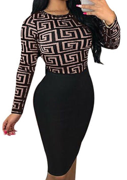 Women's Printed Long-Sleeve Bodycon Dress
