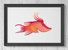 Load image into Gallery viewer, Hogfish Wrasse   Print