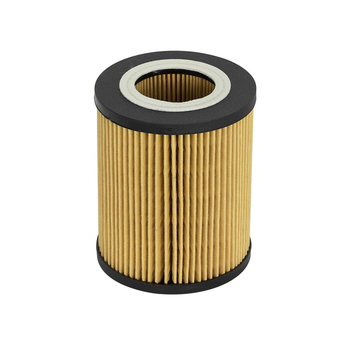 aFe Power Pro Guard D2 Oil Filter BMW Gas Cars 96-06 L6