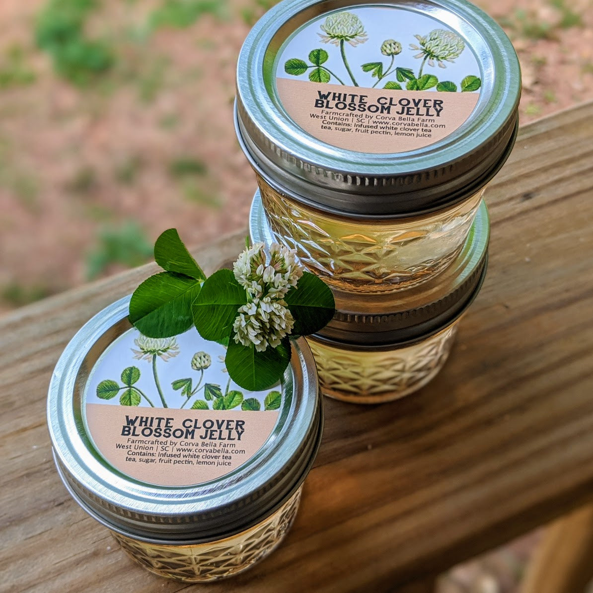 White Clover Blossom Jelly - 4 oz - Just one left!