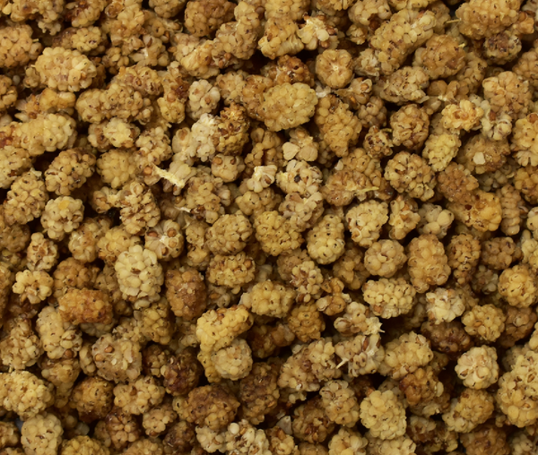 Dried Shatoot (Mulberry)