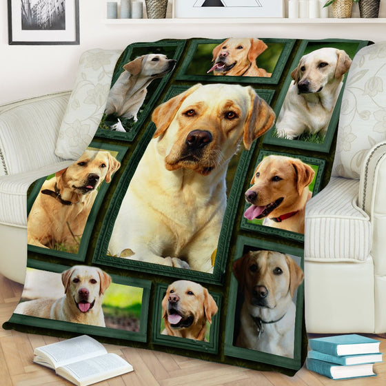Labrador Beauty Blanket
