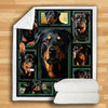 Rottweiler Beauty Blanket