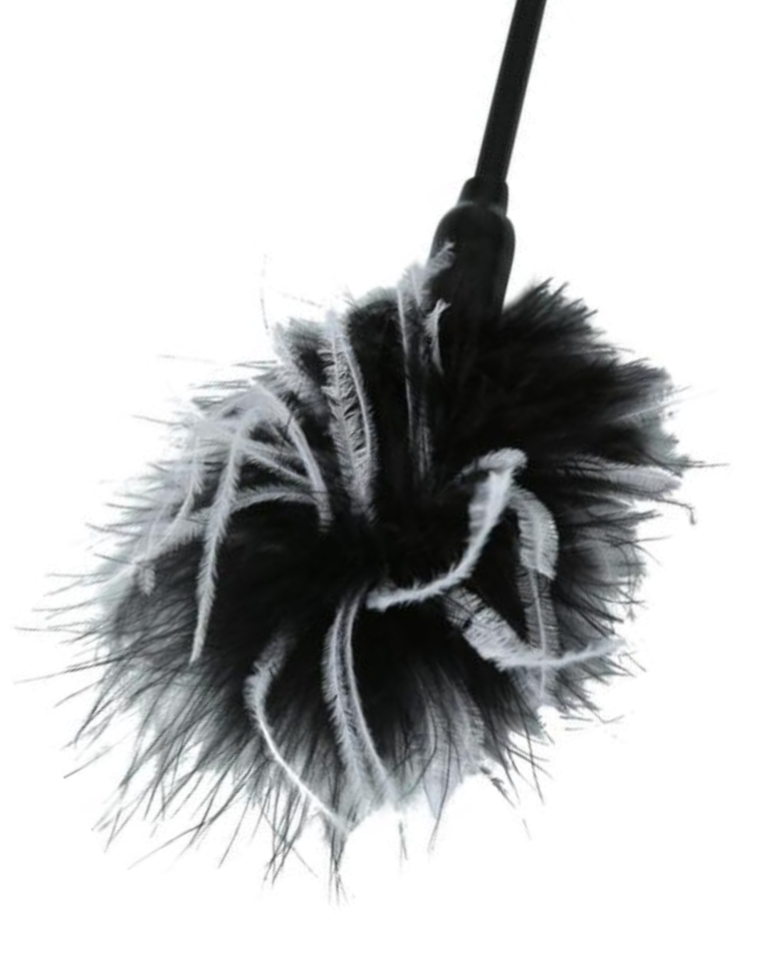 Sex & Mischief Whip & Tickle Feather Tickler & Whip - Black & White close up of the tickler