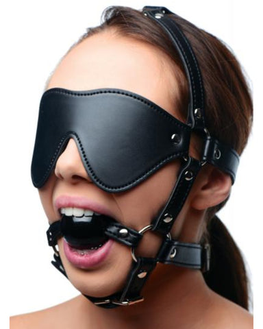 Strict Blindfold Harness Plus Ball Gag Girl wearing it