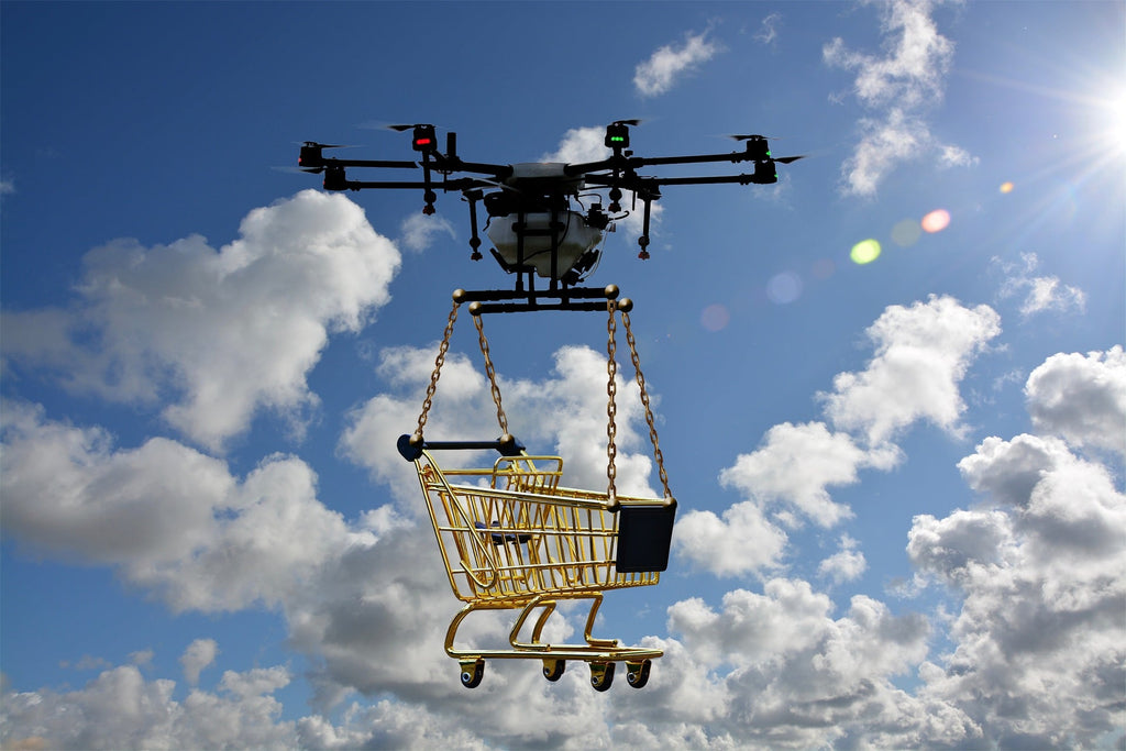 What Kind Of Drones Can Carry Cargo?