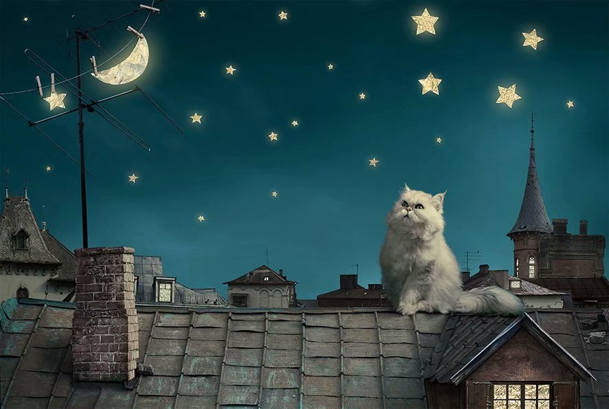 Fairy Tale White Cat on Roof 1000 Pieces Jigsaw Puzzles
