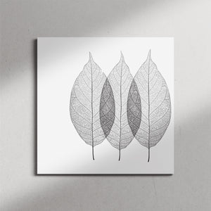 X-Ray Leaves Canvas Print
