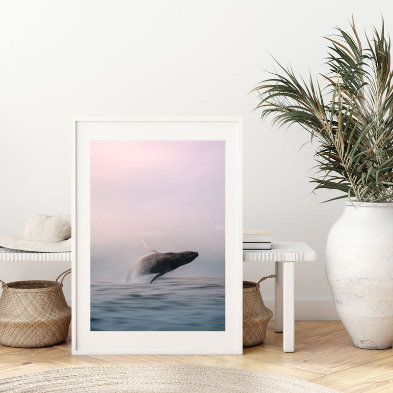 Tweed Whale Breacher Art Print