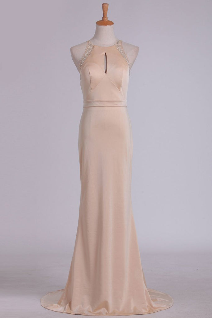 2019 Evening Dresses Sheath Scoop Spandex With Beading Sweep Train