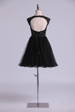 Scoop Prom Dress A Line Tulle Skirt Embellished Bodice With Beads & Applique Cap Sleeve Mini