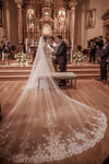 Fairy Tale Worthy One Layer Cathedral Length Lace Wedding Veil+Comb WK871