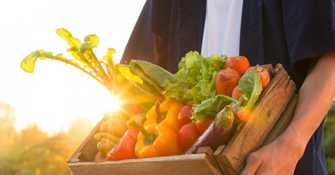 Welcome to Mt. Pleasant Produce — Your Online Amish Market!