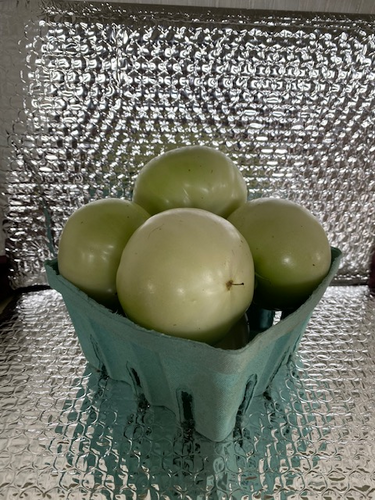 green tomatoes by the quart 4 to 5 depending on size