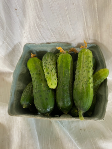 Pickles by the quart (for our Pickle enthusiasts)