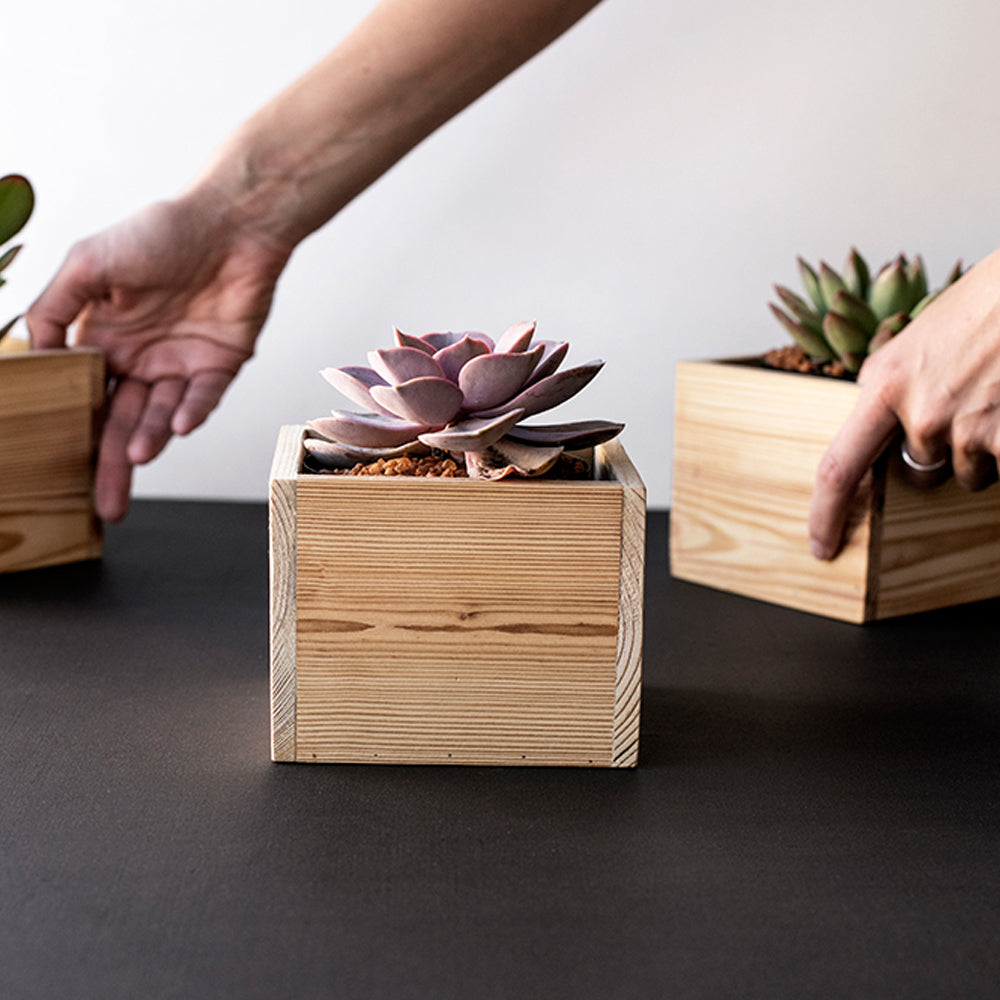 Office Planter - ARK Workshop Homeware and Furniture