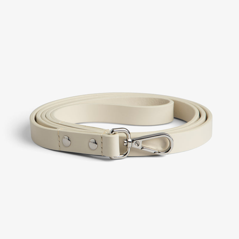 Beige on Silver Leash
