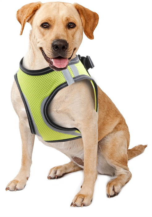 Pawise Doggy Safety Harness XS A:28-30cm B:32-37cm