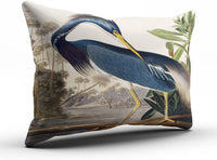 SALLEING Custom Luxury Funny Louisiana Heron By John James Audubon Decorative Pillowcase Pillowslip Throw Pillow Case Cover Zippered One Side Printed 12x18 Inches