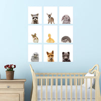 "Palace Learning Set of 9 Woodland Animal Poster Prints - Cute Baby Forest Animal Wall Art - Nursery Room Decor (8"" x 10"", Unframed Paper Cardstock) Double Sided"