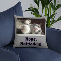 Nope. Not today! Sleeping Cat- Gray Throw Pillow Accent- 2 sizes