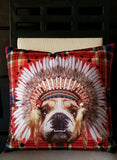 "Bulldog Wearing Feathered Headdress Plaid Background 17"" Accent Pillow US Seller"