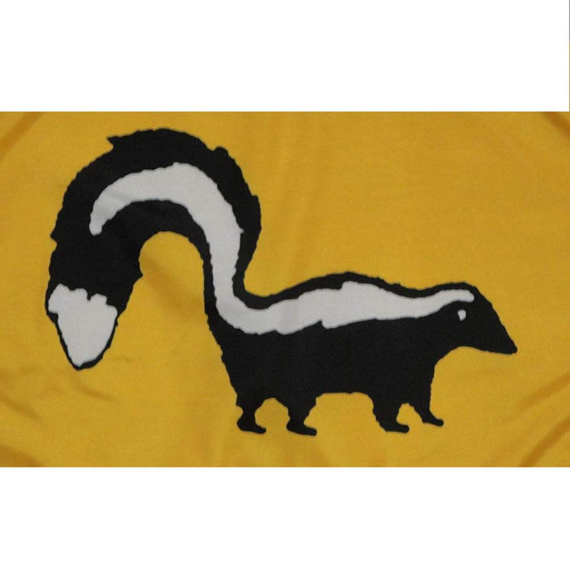 Skunk on yellow background