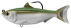 Silver and green sardine with a hook coming out by the top fin