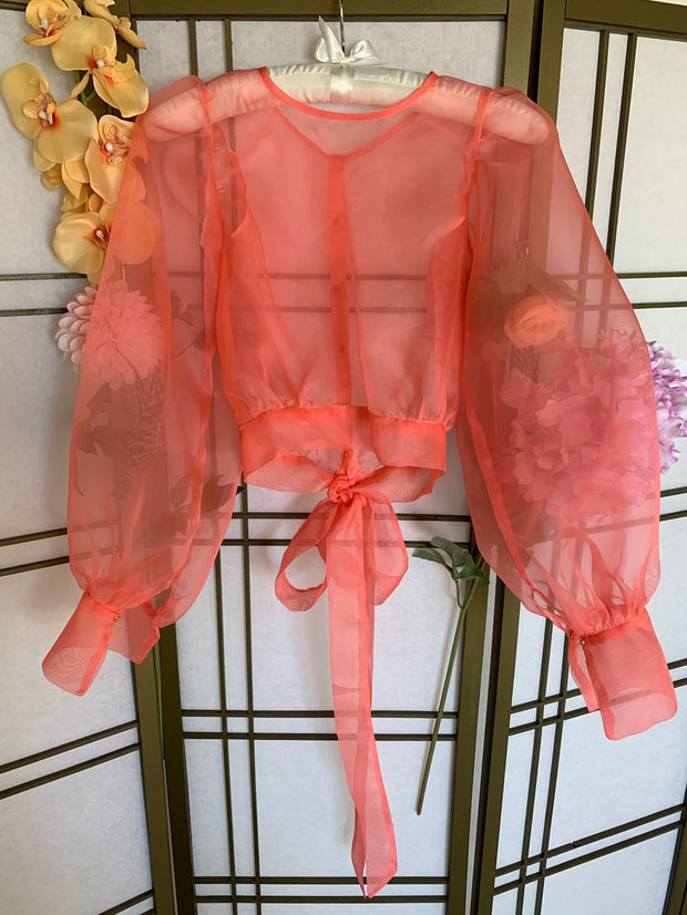 Brea Silk Organza Top