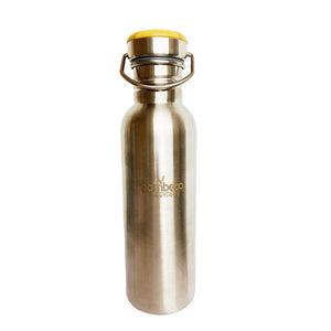 Insulated Stainless Steel Bottle With Bamboo Lid