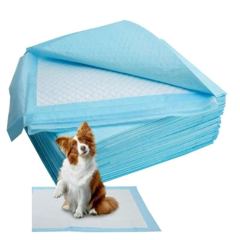 50/100pcs Dog Training Pee Pads Super Absorbent Pet Diaper Disposable Healthy Clean Nappy Mat for - My Web Store Shopping