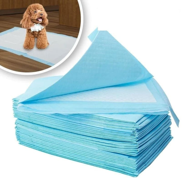 50/100pcs Dog Pee Pads Super Absorbent Pet Diaper Disposable Healthy Clean Nappy Mat for Pets Dairy - My Web Store Shopping