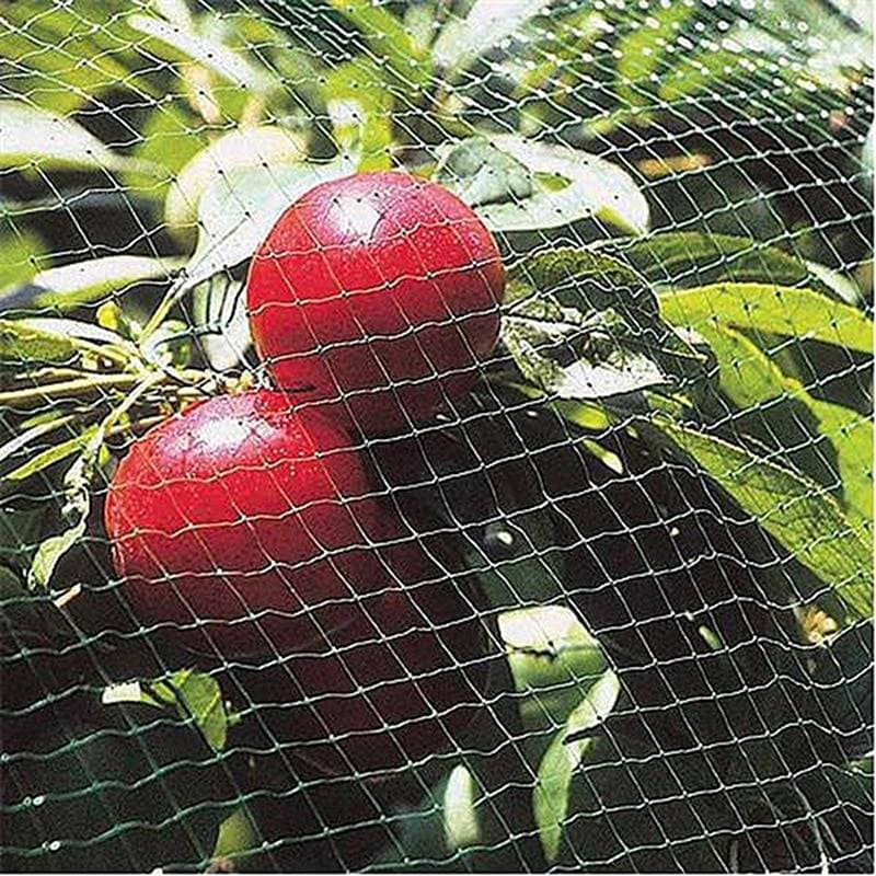 Nylon Anti Netting Pond Crops Protect Gardening Fruit Tree Vegetable Protection Pest Control Trap - My Web Store Shopping