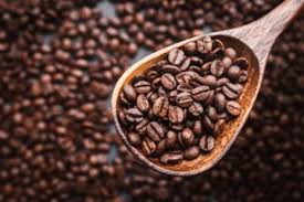 Arabica vs Robusta – what's the difference?