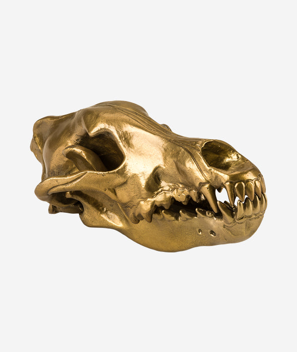 Wolf This Way Wolf Skull Seletti - BEAM // Design Store