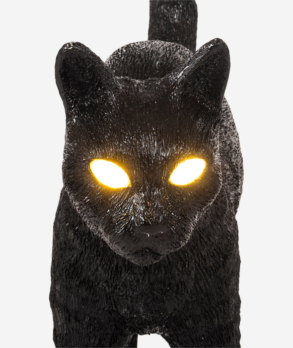 Jobby The Cat Lamps