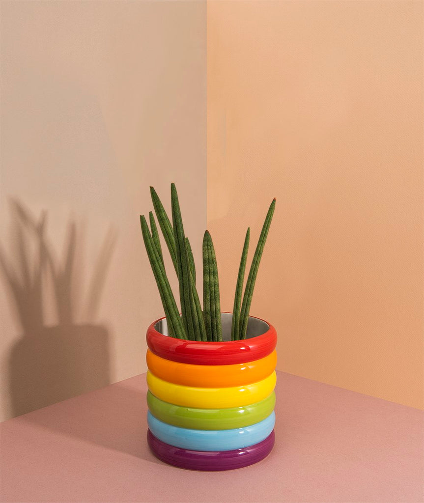 Rainbow Plant Pot DOIY - BEAM // Design Store