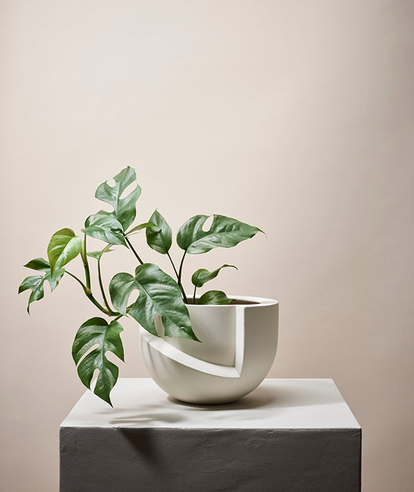 Vayu Tabletop Planter - 3 Colors