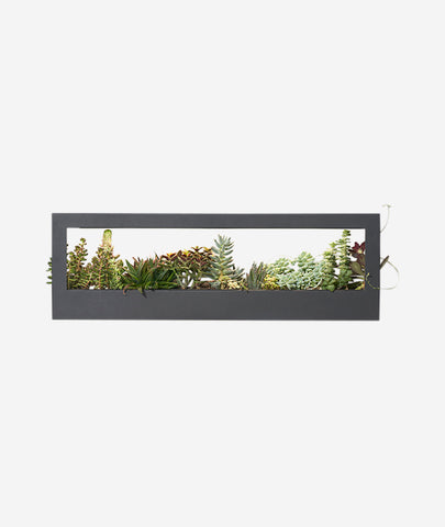 Growframe Landscape Modern Sprout - BEAM // Design Store