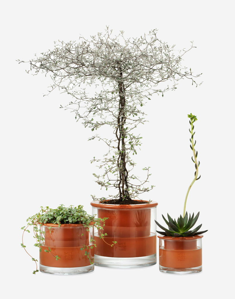 Self-Watering Pot - 3 Sizes Moma - BEAM // Design Store