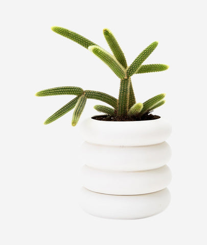Stacking Planter Tall Areaware - BEAM // Design Store