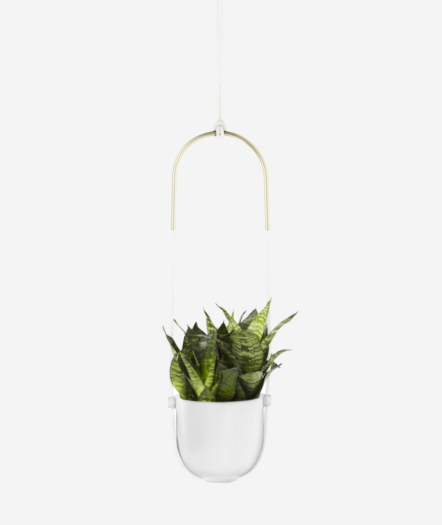 Bolo Planter - 2 Colors Umbra - BEAM // Design Store