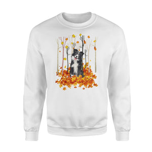 Fall Border Collie Shirt and Hoodie - IPH483