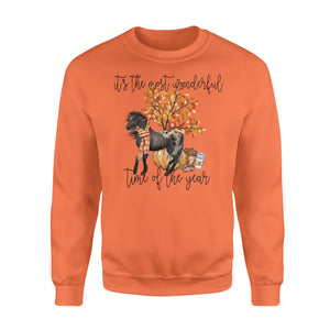 Appaloosa Horse Autumn tree fall leaf pumpkin - beautiful fall season Sweat shirt - Halloween, Thanksgiving, birthday gift ideas for horse lady, horses lovers - IPH702