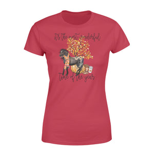 Appaloosa Horse Autumn tree fall leaf pumpkin - beautiful fall season Woman T-shirt - Halloween, Thanksgiving, birthday gift ideas for horse lady, horses lovers - IPH702