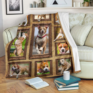 3D American Staffordshire Terrier Dog Throw Fleece Blanket - 3DTH167