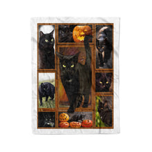 Load image into Gallery viewer, Halloween Black Cat Fleece Blanket DRS - IPH518