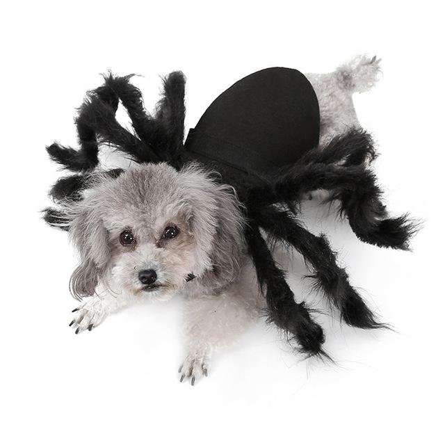 HALLOWEEN PET SPIDER COSTUME (FOR BOTH DOGS & CATS)