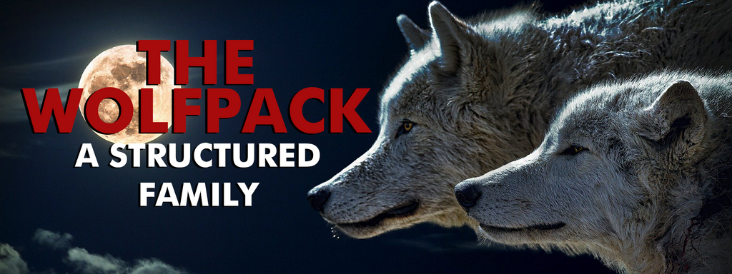 How is Wolfpack organized?